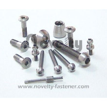 Titanium Hex Socket Screw