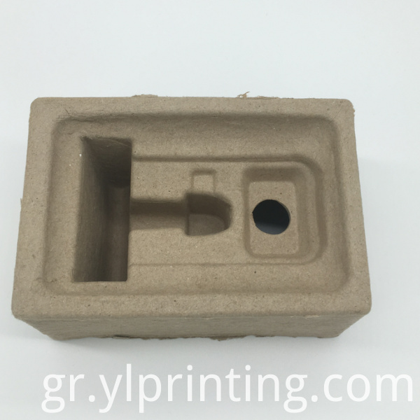 Disposable Pulp Tray