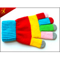 Adult Winter Gloves Touch Screen