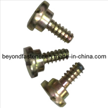 Screw Step Screw Specail Screw Garden Machine Bolts