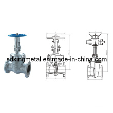 DIN F5 Cast Steel Rising Stem Gate Valve