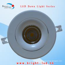30W Ángulo de haz ajustable LED Down Light