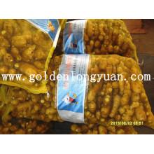 Gingembre frais emballé dans un sac en maille de 20 kg pour le marché pakistanais