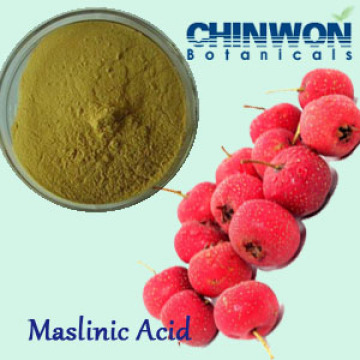 57. Weight Loss and Muscle Mass Strengthen Hawthorn Leaf Extract Maslinic Acid
