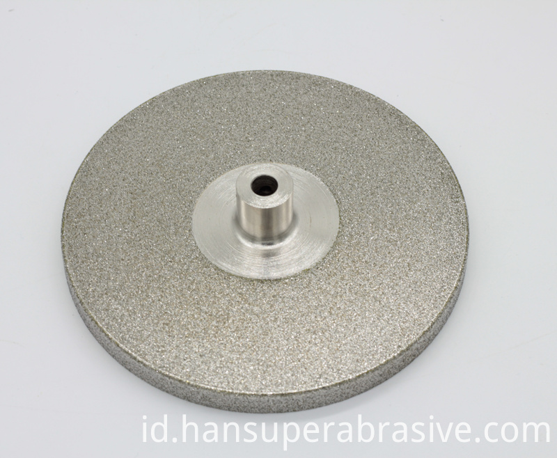 Polishing Disk for the Twin Spin by Inland