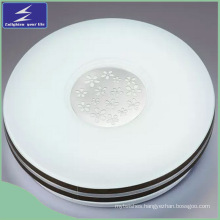 Indoor LED Lighting Decoration 22W