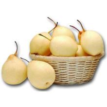 2016 Année 100% Bio Fresh Ya Pear à la vente