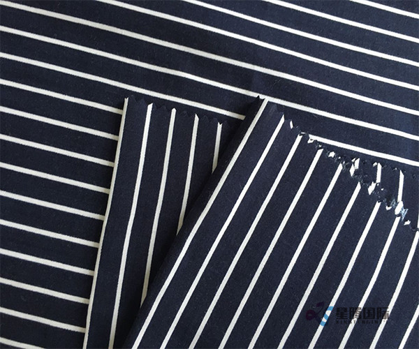 Stylish Stripe Rayon