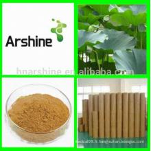 Extrait naturel de feuille de lotus organique, poudre d'extrait de feuilles de lotus, thé minceur