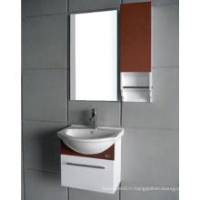 Cabinet de salle de bains en PVC / vanité de salle de bain en PVC (KD-299D)