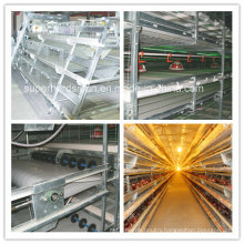 Poultry Equipment of Chcken Cage for Broiler and Layer