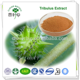 100% Pure Natural Tribulus Terrestris Extract
