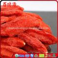 importação goji berry granel goji alimentos orgânicos frutas congeladas