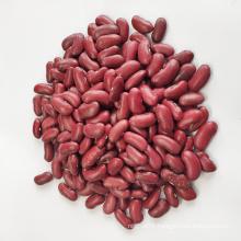 For Sale Chinese Origin in Shanxi Dark Red Kidney Beans