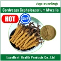 Cordyceps Cephalosporium Mycelia, Extracto Cordyceps