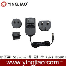 12W DC Adaptor and Changeable AC Plug