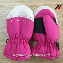 Kids Embroidery Patterns Thinsulate and Waterproof Color blocked Snowboarder Gloves