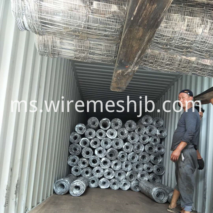 Woven Wire Field Fencing