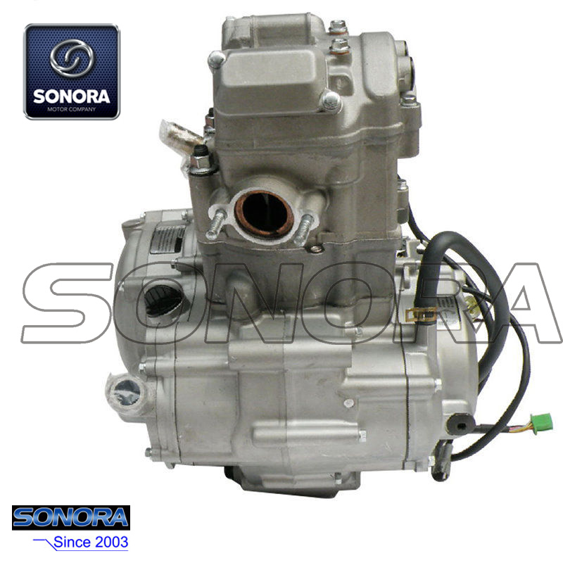 Zongshen NC250 Engine Complete Set(1)