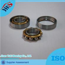 E4 Copper Cage Magnetic Motor Bearing