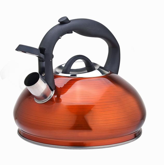 Stainless Steel Tea Kettle Fh 465