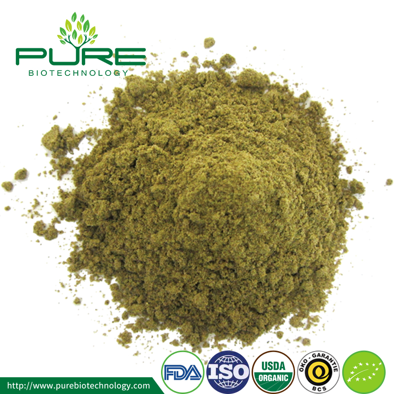 100% Natural Hemp Seed Protein Powder