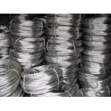 Hot Rolled High Quality Titanium Coil