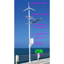 WPSRR-7706 3~15m Municipal Road Hot DIP Galvanized Steet Light Pole style