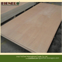 Hot Sale PA/Plb Face Plywood for Algerian Market