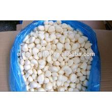 Whole IQF Frozen Natural Garlic