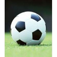 Футбольный мяч Футбол