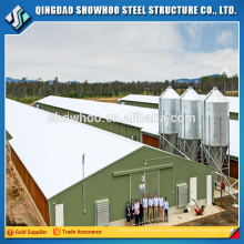 Weld H Column Beam Prefabricated Steel Chicken Shed Prefab Poultry House