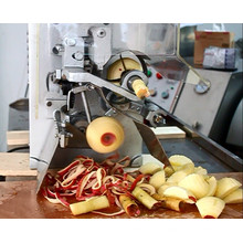 Fxp-22 Apple peeling y máquina de encolar