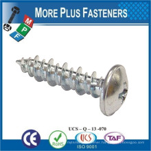 Made in Taiwan Tapping Screw with Hi Lo Thread