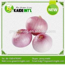Dehydrated White Onion With High Quality