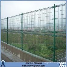 Doble bucle de alambre decorativo valla de malla para los jardines