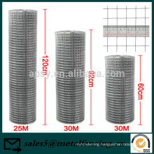 Steel Wire Welded Wire Mesh Panel Aviary Hutches Animal Fence