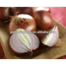 Продам 2013 новый урожай Желтый лук
