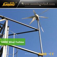 Utilisation résidentielle à la maison de petite turbine de vent 600W de générateur de vent