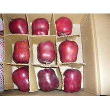 2015 frische neue Ernte Huaniu Apple