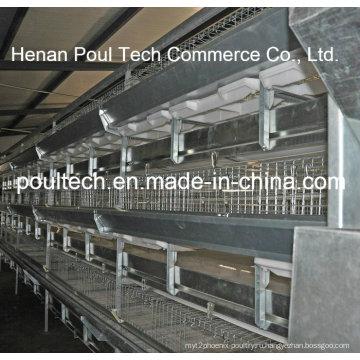 Автоматический гальванический цыпленок для бройлеров (тип H)