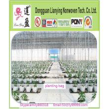 Popular hasta Mini Árbol de Invernadero Plantación Bolsa