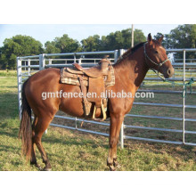 galvanized or PVC coated horse fence /pipe fencing for horses/horse paddock fence