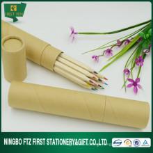 Werbeartikel Eco-Friendly 12 In 1 Holzfarben-Bleistift-Set
