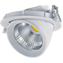 COB LED abajo luz 30W 2500lm COB Pf > 0,9 AC100 ~ 240V