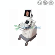 Ysb8000p Mobile 4D Color Doppler Ultrasound Machine