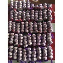 Свежий фиолетовый чеснок в 4р/Mesh мешок