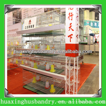 Chine petite cage de poulet professionnelle pour poulailler