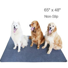 Améliorez les coussinets antidérapants pour chiens