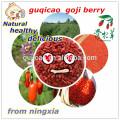 Baya de goji convencional de la fruta 2016, bayas de goji orgánicas, wolfberry